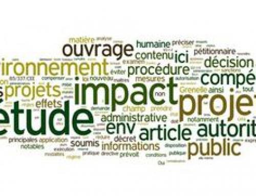 Analyse des Impacts de la Réglementation: position paper