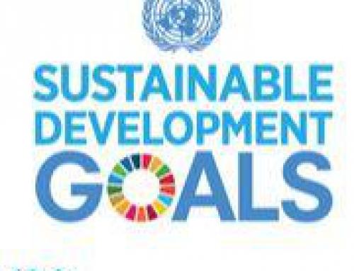 Pistes pour la mise en œuvre des Objectifs de Développement Durable en Belgique