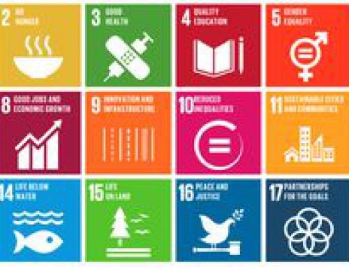 Développement durable: stratégies ficelées aux niveaux wallon et national