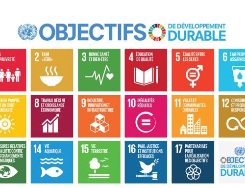 Le développement durable au(x) rapport(s) de Cécile de Schoutheete  IEW