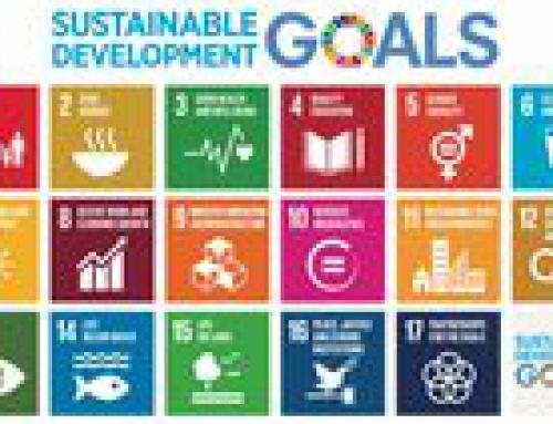 Appel à projet SDG voice