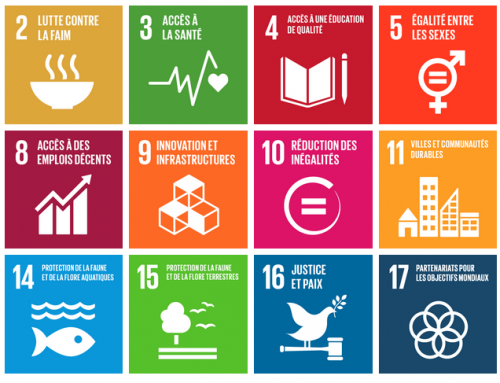 Politique de durabilité d'Associations21