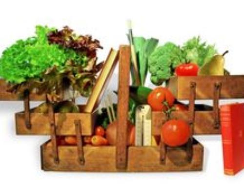 Chronique Covid n°3: l'aide alimentaire à repenser à l'épreuve du coronavirus